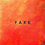 Fake, Die Nerven - Fake, Nerven, Die - Fake, Vinyl, Nerven neues Album, Nerven New Album, Records, Vinyl, 4030433793817